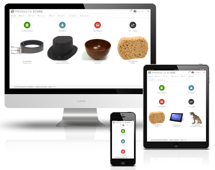 Responsive Products Store